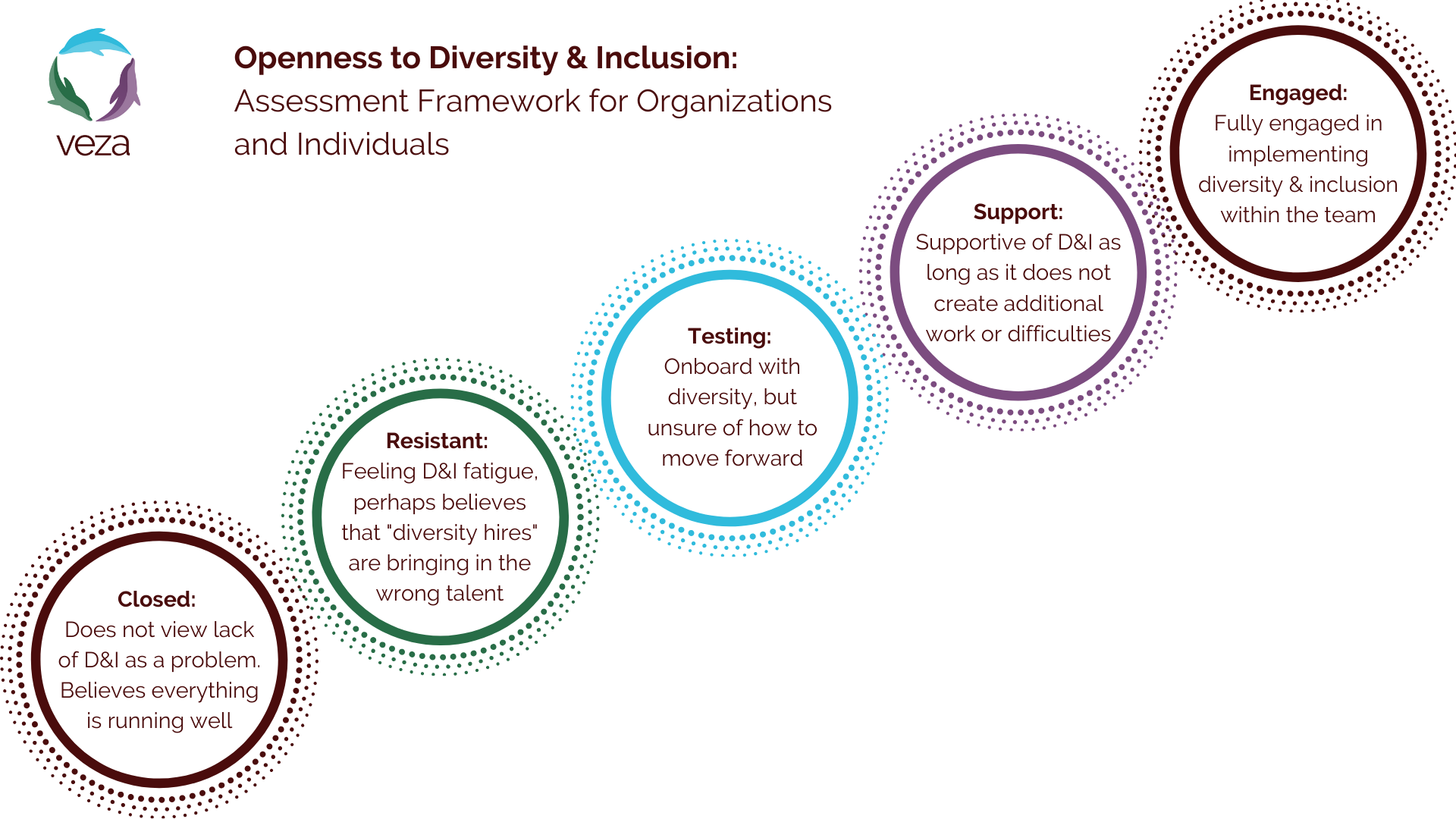 Openness to Equity, Diversity and Inclusion Model